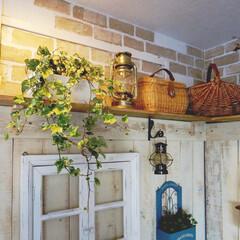 緑のある暮らし/窓枠/リメイクシート/ディスプレイコーナー/板壁/リビング/... リビングの壁に板壁を貼り、上には棚を付け…