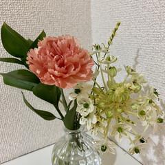 癒し/可愛い/花/ブルーミー/BLOOMEE ブルーミーからお花が届きました〜😆💕 ポ…(1枚目)