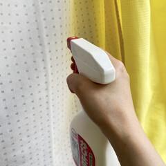 サンデーペイント かび止めL 500ml(部屋用)を使ったクチコミ「我が家の梅雨対策! ①カーテンを洗ってか…」(2枚目)