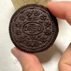 オヤツ/チョコミント/オレオ オレオ発見! チョコミント好きな人だけに…