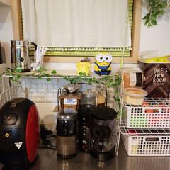 キッチン/100均/セリア 前回作ったワイヤーネット棚に、ちょうど良…(1枚目)