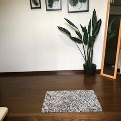 グリーン/玄関 初投稿 我が家の玄関です。グリーンという…