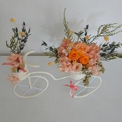 楽しみ/毎月/花/好きな色/元気色/自転車/... プリザーブド  自転車  オレンジが 沢…