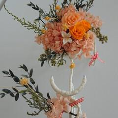 楽しみ/毎月/花/好きな色/元気色/自転車/... プリザーブド  自転車  オレンジが 沢…(2枚目)