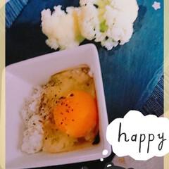 カリフラワー 卵かけご飯とカリフラワー  美味でござい…