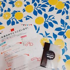 Aconitum |  Pattern.Oku リメイクシート | Harokka(壁紙)を使ったクチコミ「LIMIAのモニターで Harokka様…」(4枚目)