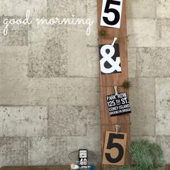 リノベーション/カフェ フォトポストカード