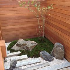 リノベーション/リフォーム/庭/坪庭/和 古家をリノベーションした際、庭も再生。こ…