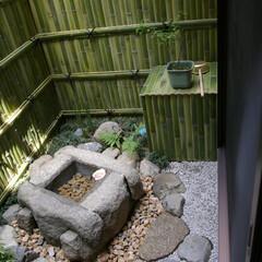 庭/日本庭園/蹲/手水鉢 もう説明はいりませんw庭