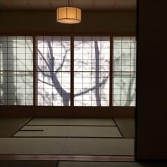 和室/離れ/和風/畳 南禅寺I邸のゲストルーム(離れ) (1枚目)