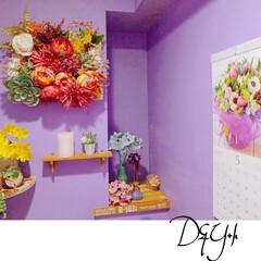 自分で塗りました/壁の上から塗れる塗料/トイレリフォーム/DIY