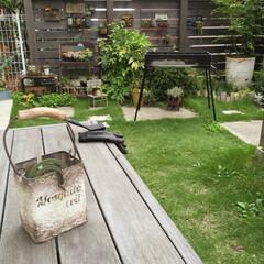 リメ缶/リメイク缶/蚊取り線香/多肉植物/ハンドメイド/お庭(ガーデン)/... 一昨日のBBQコンロを… 早帰りの子供た…