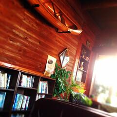 インテリア 懐かしカフェ