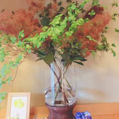 フラワーベース/花のある暮らし/ディスプレイ/花瓶/玄関インテリア/玄関/... ガラスと木を組み合わせたデザイン性の高い…(1枚目)