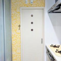 キッチン/張り替え/壁紙/壁紙本舗/DIY/シンコール キッチンの壁紙張り替えbefore→af…