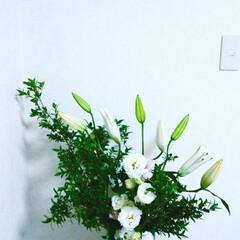 生花 花も入れて賑やかに🎶