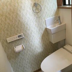 トイレリフォーム/タンクレストイレ/LIXILサティス/トイレの壁紙/アイキャッチクロス/アクセント壁 近年、お風呂の壁にアクセントパネルという…