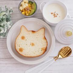 ドット柄/ネコ型/ねこねこ食パン/焼き色アート にゃー×朝食♡vol.2  焼き色アート…(1枚目)