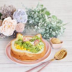 パン/サラダ/サラダサンド/ねこねこアレンジ/ねこねこ食パン/グラホ にゃー×サラダサンド♡  今日はシンプル…(2枚目)