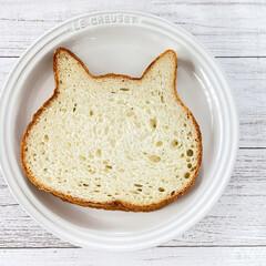 ネコ型/焼き色アート/ねこねこ食パン にゃー×朝食♡  ねこねこ食パン、やっと…(2枚目)