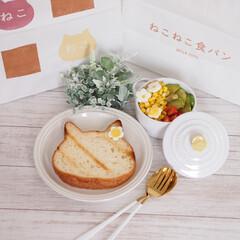 ネコ型/焼き色アート/ねこねこ食パン にゃー×朝食♡  ねこねこ食パン、やっと…(1枚目)