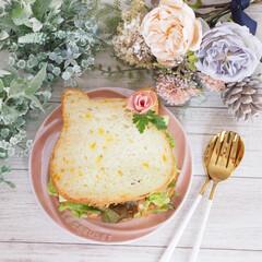 サンドケーキ/にゃー/サンドイッチ/チーズ/ねこねこ食パンアレンジ/ねこねこ食パン ニャーサンドケーキ×ねこねこ食パン♡  …(1枚目)