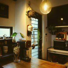 壁掛け珈琲ミル/カウンターdiy/キッチンカウンター/キッチン雑貨/DIY 3.8mキッチンカウンター 杉一枚板をカ…