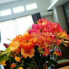 ガラス花瓶/花束 ガラスの花瓶は何を生けても綺麗です ドウ…