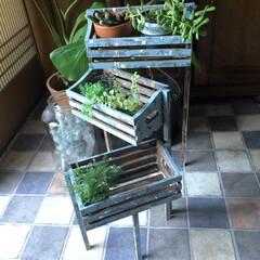 DIY/セリア/プランター セリアの木箱を使って、可動する3段ラック…