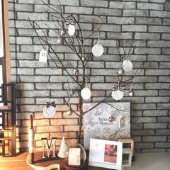 セリア/ハンドメイド/雑貨/クリスマス/オーナメント/モノトーン オーナメントは造形粘土で作りました。 庭…