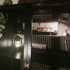 DIY/チキンネット/インダストリアル/レトロ/真空管ラジオ/バンカーズライト/... 波板トタンを背面に、チキンネットを扉に収…