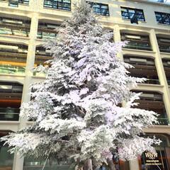 クリスマス/ホワイトツリー/東京駅/KITTE/旅の写真 KITTEのホワイトツリーが好きです♪