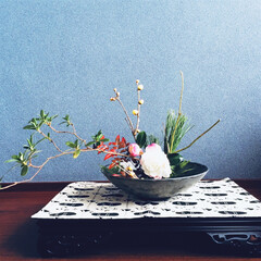 庭の花/自己流/和と洋/床の間/生け花/お正月/... 庭の花で床の間にも華やかさを。 フラミン…