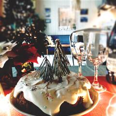 西海岸インテリア/手作り/クリスマスケーキ/クリスマス/雑貨/インテリア/... 森の雪景色をケーキにしました。 ココアス…