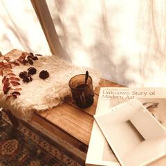 美術館図録/ベンチDIY/芸術の秋/読書の秋/紅葉/ファイヤーキング/... 秋の陽射しの窓際でコーヒーを飲みながらア…