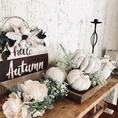ウエルカムボードdiy/ベンチDIY/ダイソー/セリア/DIY/ハロウィン/... ダイソーのかぼちゃオブジェをホワイトにペ…