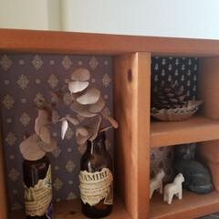 ユーカリ/空き瓶リメイク/DIY/ソレイアード/インテリア 昔、よく読んでいたブログのプレゼントキャ…
