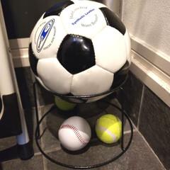 ダイソー/100円グッズ/片づけ/収納 ダイソーの植木鉢ホルダーをボール収納に。…
