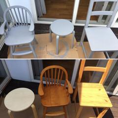 DIY/ペイント/艶消しグレー/椅子 /IKEA 家にあるバラバラの木目調の椅子を艶消しの…