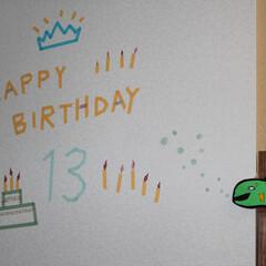 誕生日/マスキングテープ マスキングテープで息子に誕生日メッセージ…