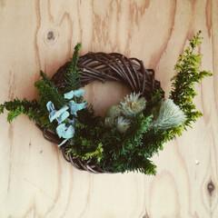ヒバ/ユーカリ/おうちデコ/リース/グリーンインテリア/ハーフリース/... スワッグを作った残りの花材で、ハーフリー…