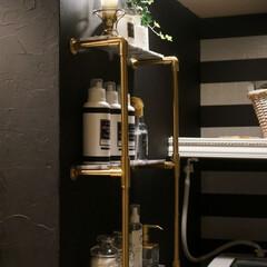 海外インテリアに憧れる/ホテルライク/見せる収納/洗面所/洗面所収納/スチームパンク/... 塩ビパイプで作ったわが家の洗面収納。 塩…