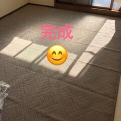 シングルベット/模様替え/寝室 今日は1日、寝室の模様替え😊 ダブルベッ…