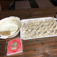 手作り餃子/グルメ/フード/おうちごはん 今日の夕ご飯は、手作り餃子❣️ いつも餡…