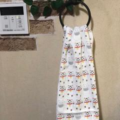 ヘアカラー/招き猫タオル/キッチン 頂いた、フェイスタオルをキッチンのお気に…
