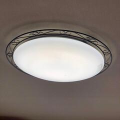 ムック/熱帯魚のベタ/天井照明/ペット/犬 我が家の天井照明達 リビングはアイアン調…