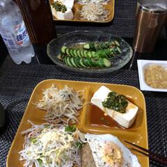 きゅうり蛇腹/おうちご飯 yuugaoさんのレシピの韓国風きゅうり…