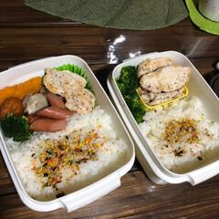 おつまみ/犬服/お弁当 朝4時に作る毎日のお弁当🍱 ツライ💦1時…