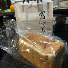 若い頃/懐かしい/ムック/乃が美/ペット 乃が美の食パン ご近所さんが買って来てく…