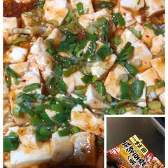 味仙の麻婆豆腐/おうちごはん 今晩は 名古屋めし・味仙の麻婆豆腐 焼き…